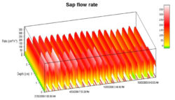 Graphing Sap Flow Rate